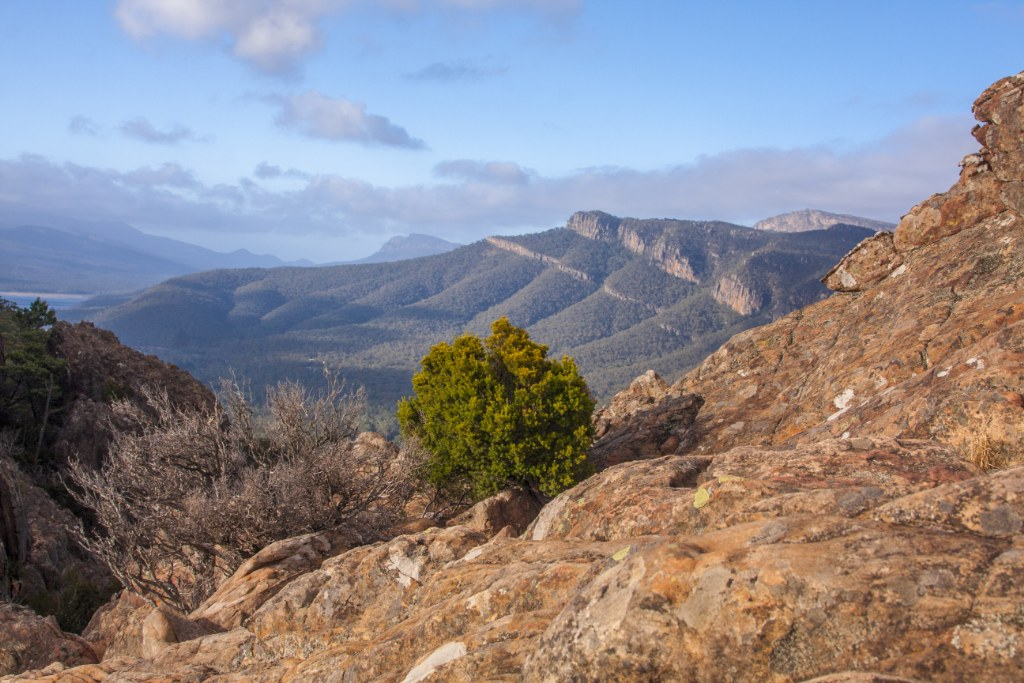 Boronia Peak_1_1024x683
