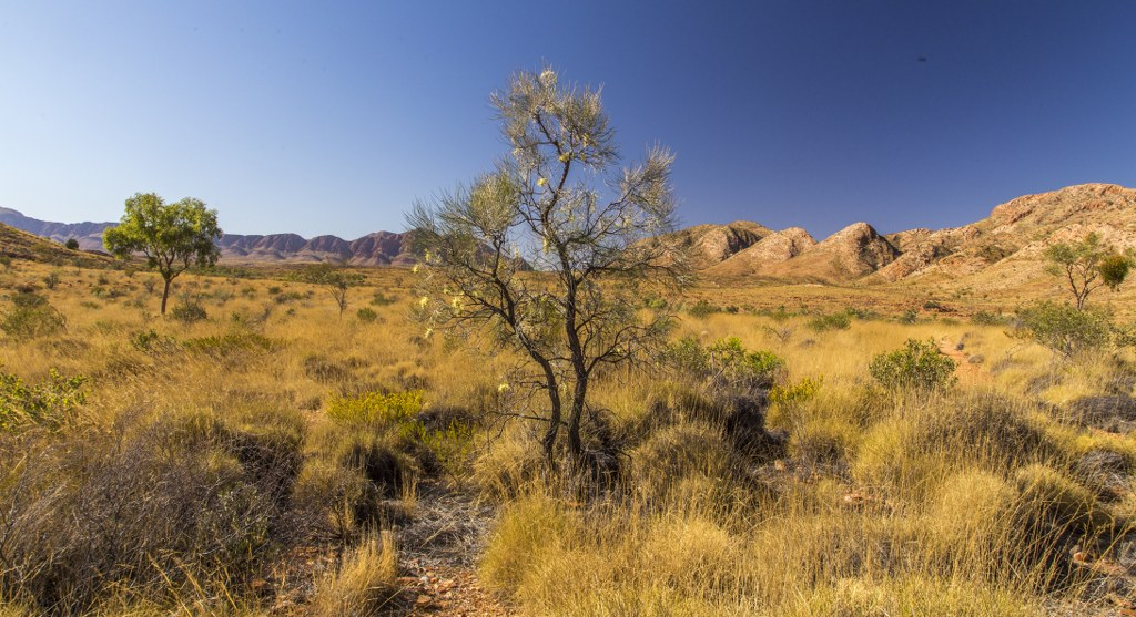 Ormiston Gorge_6_1024x557