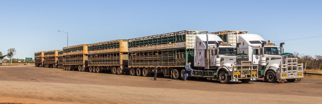 Road Trains_1_1024x333