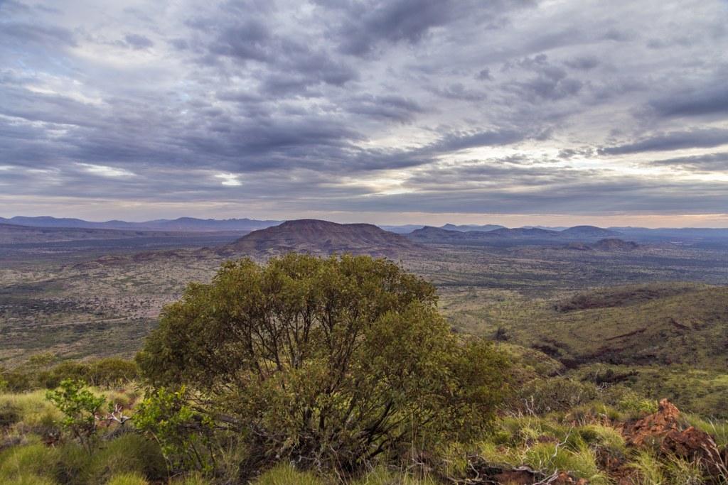 Mt Robinson_1_1024x683