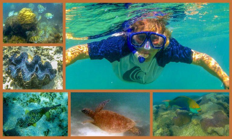 Ningaloo Reef3_1024x614